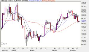 Gold Chart - Daily Spot Prices January 14th 2009
