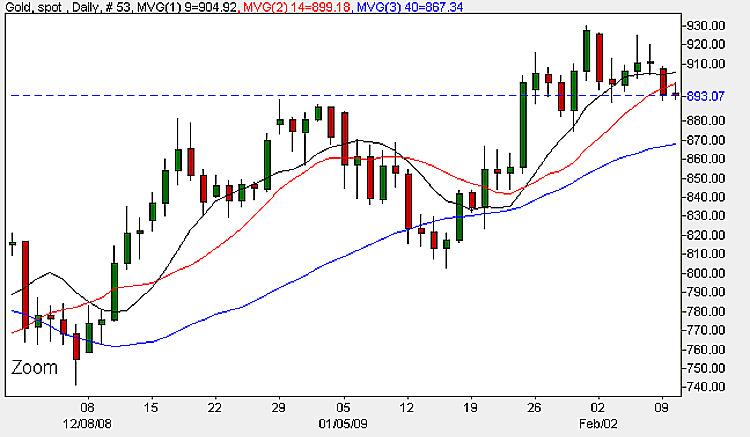 Spot Gold Prices - Daily Candle Chart 10th February 2009