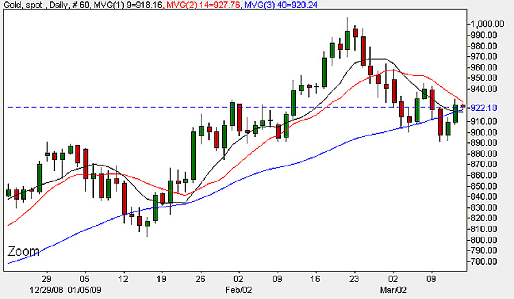 Spot Gold Prices - Daily Candle Chart 13th March 2009